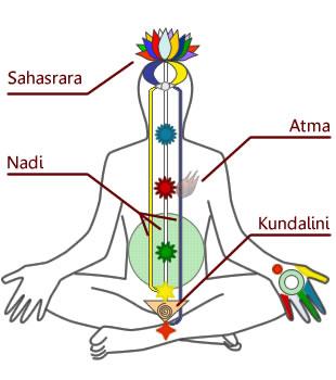 DiagrammaChakraKundalini